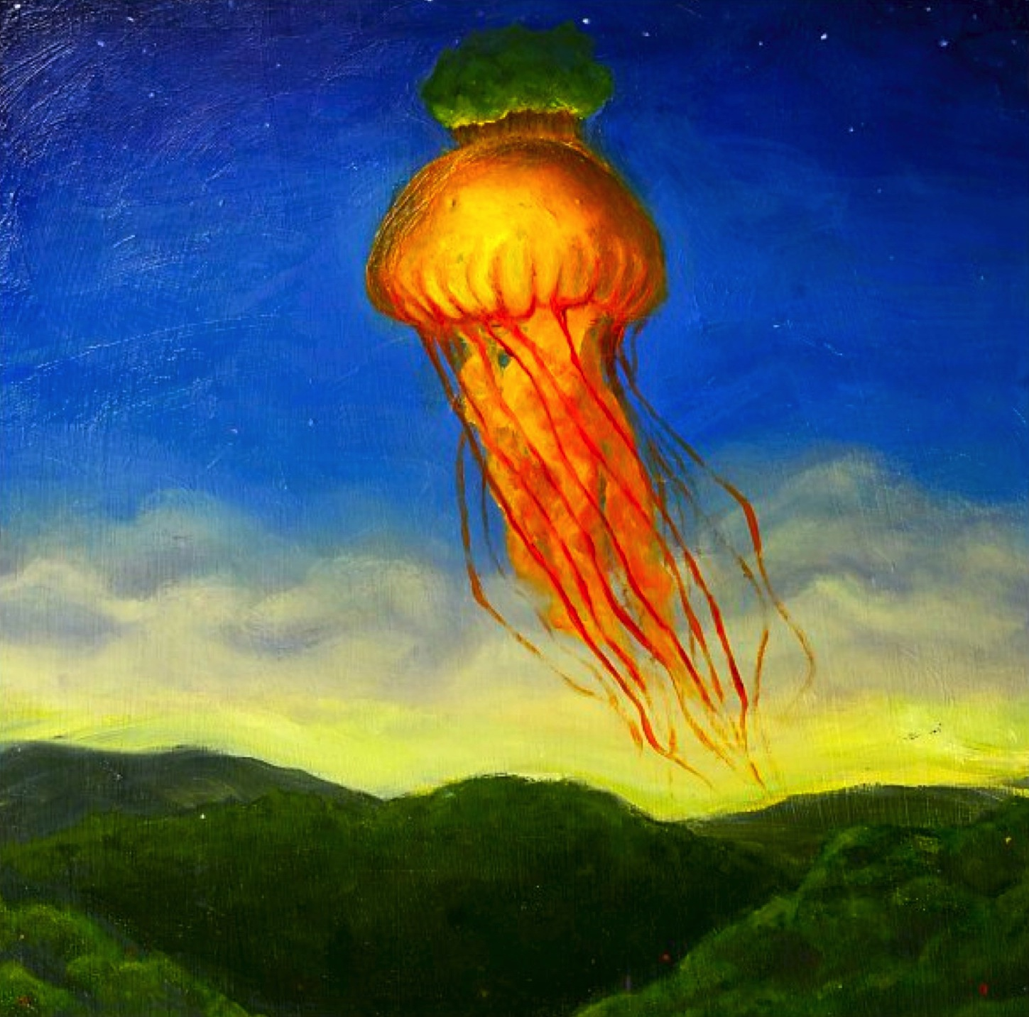 The Appalachian Jelly Fish